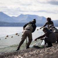Students pulling nets out of the water at the Alaska Salmon Camps
