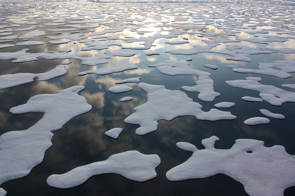 Arctic ice with water between large chunks of ice.