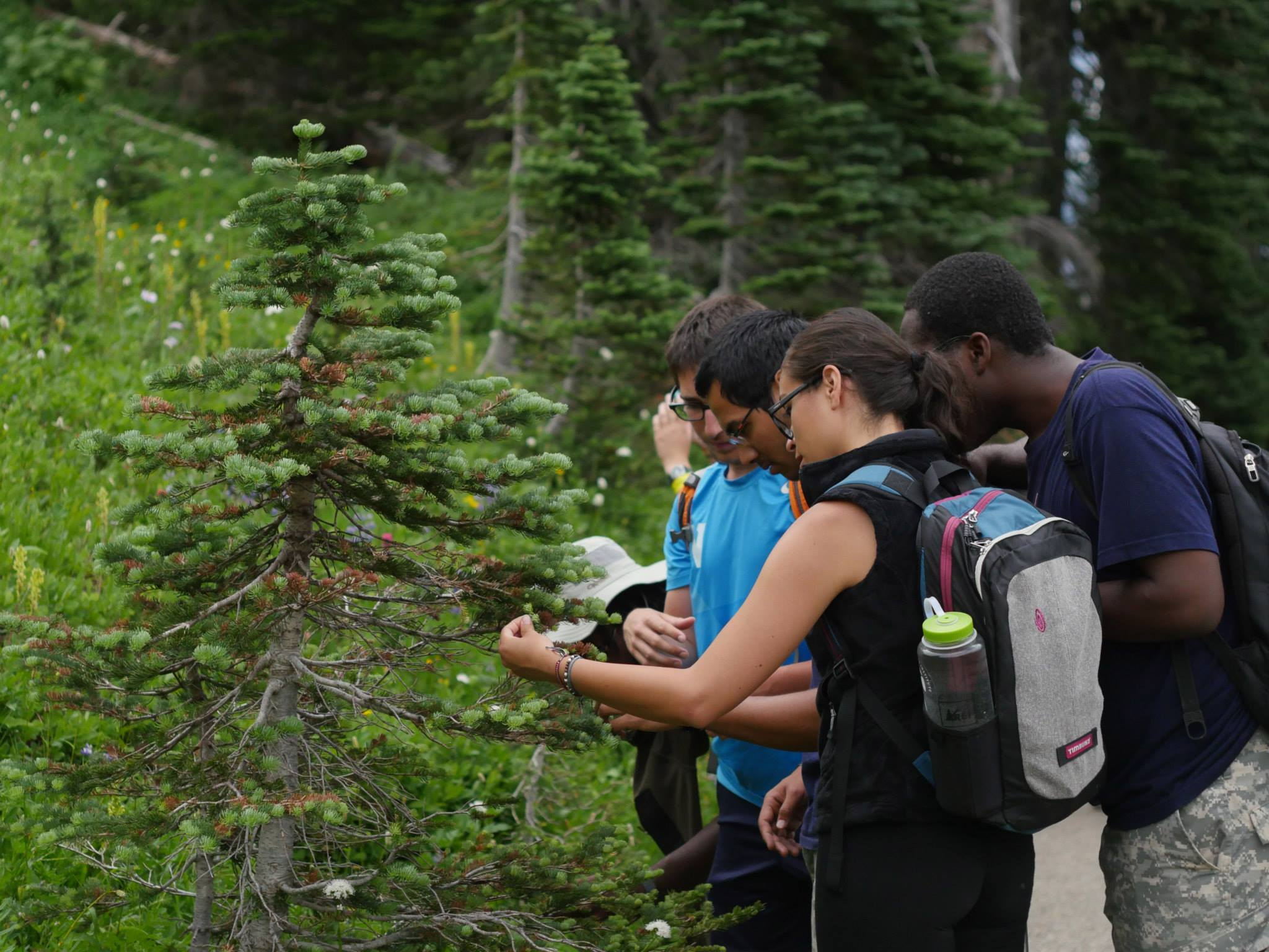 Doris Duke Conservation Scholars at UW are helping define how diverse groups shape conservation.