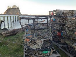 Crab fishing gear sits in port at La Push after a delayed opening season.