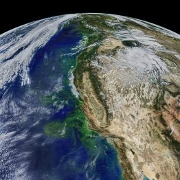The Pacific Ocean off the West Coast is teeming with phytoplankton, plant-like marine organisms that reflect green light. Puget Sound is at the top of this image.