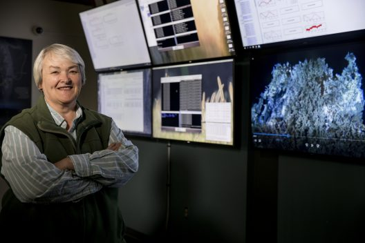 The School of Oceanography's Deb Kelley in the control room at the UW.