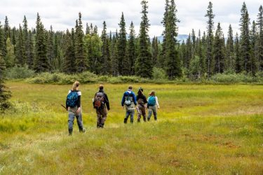 A class hike across the tundra on their way back to camp.