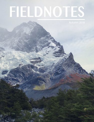 The cover of the autumn 2018 edition of FieldNotes, a journal that highlights undergraduate research from the College of the Environment.