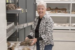 Elizabeth Nesbitt with some of the whale fossils in the Burke Museum's collection.