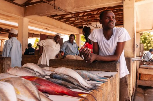Man in a fish market